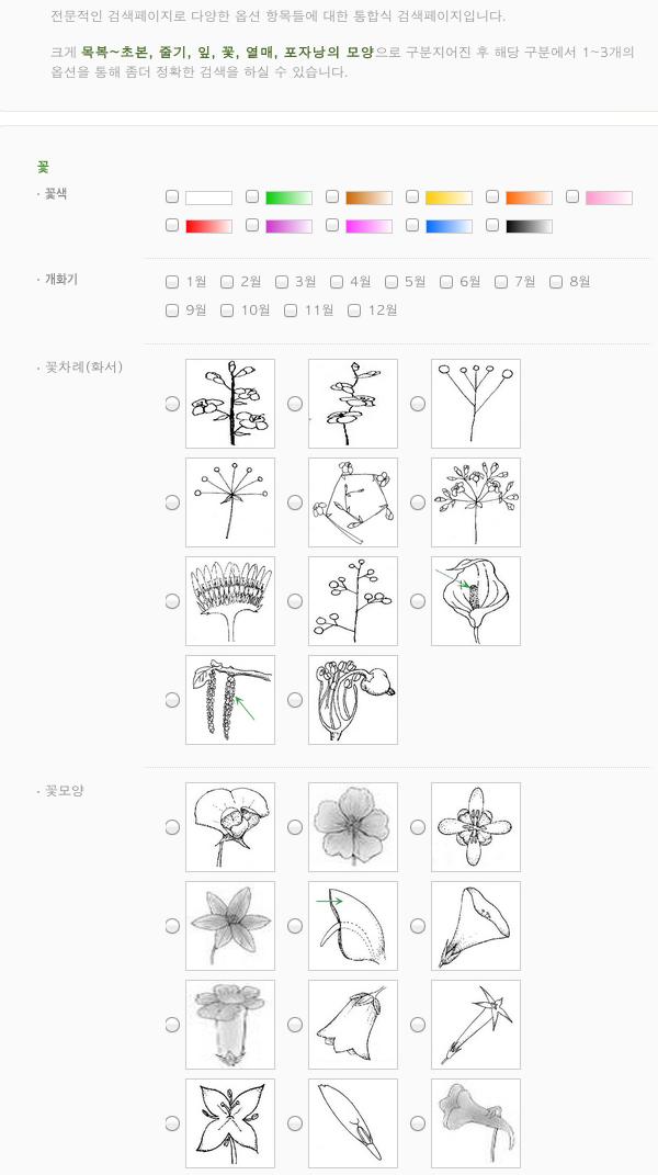 꽃 이름 찾기 - 국가생물종지식정보시스템의 예