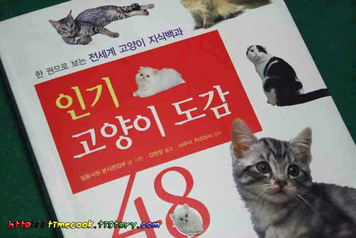 고양이책, 고양이책 소개, 인기 고양이 도감 48 후기, 고양이 도감, 고양이 지식백과, 고양이 정보
