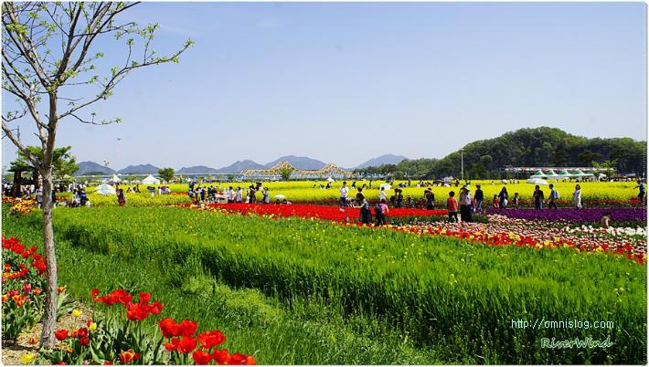 봄 여행 가 볼만한 곳 아름다운 낙동강/OmnisLog
