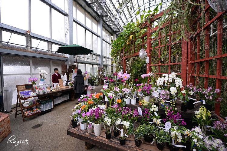 마키노 식물원 온실 꽃가게