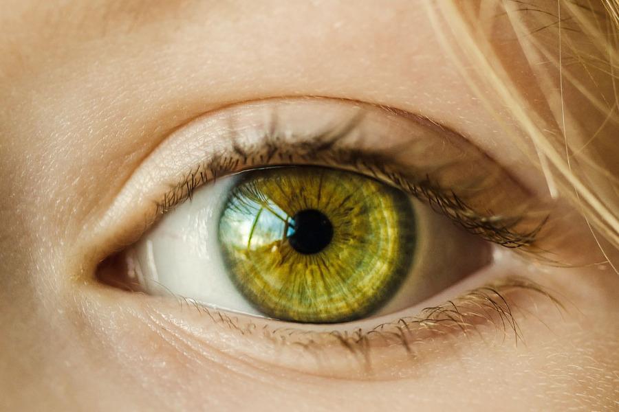 스피루리나 효능 눈건강에 효과적