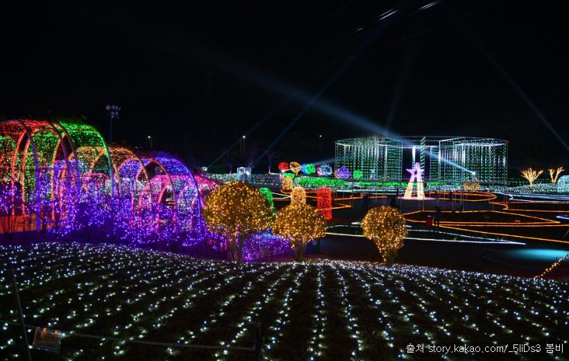 울산대공원 장미원 빛축제 : 별빛 겨울밤을 수놓다~ 장미위에 내려앉은 아름다운 별빛의 향연 빛으로 피어나는 300만송이의 장미! 겨울밤 이야기