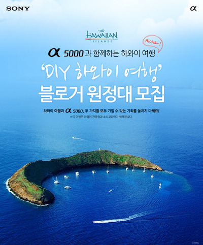 소니 5000 하와이 블로거 원정대