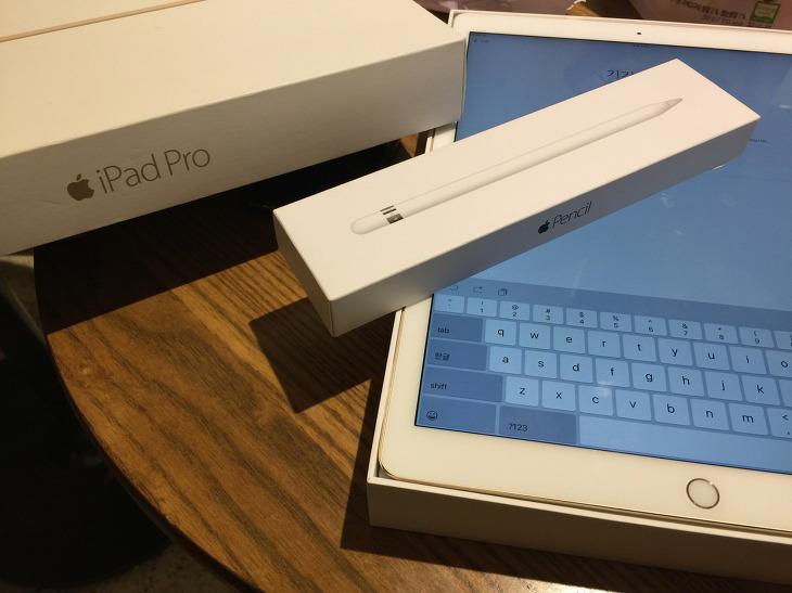 아이패드 프로 12.9 애플 펜슬