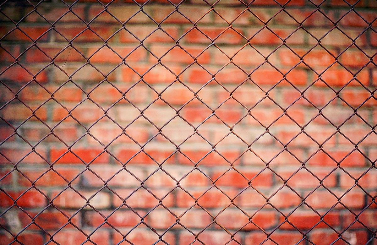 바로 앞으로는 다이아몬드 모양의 팬스가 패턴지어 나타나고 아웃포커싱되어 흐린 배경으로는 빨간벽돌의 패턴이 나타난 사진.
