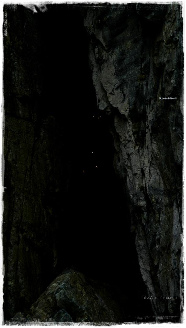 굴섬 입구에서 보는 낮도깨비불 ?!