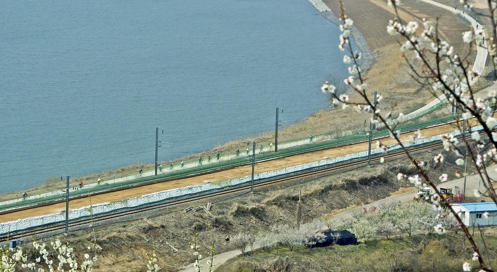 낙동강 하이웨이에 봄이 왔습니다
