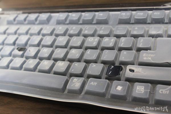 LG전자 (MKS-1300SET), 무선키보드마우스세트로 책상위를 깔끔하게! [무선키보드마우스세트 추천/LG 무선마우스 무선키보드(MKS-1300SET) 사용기]