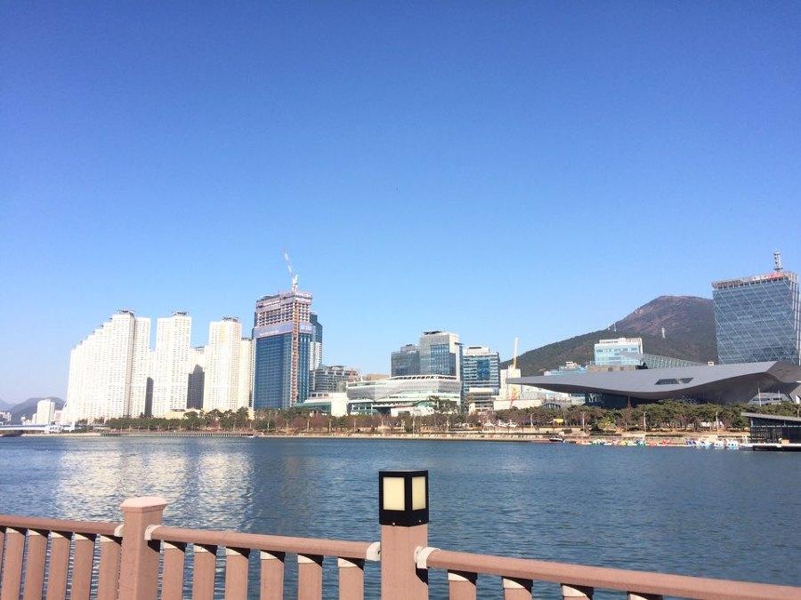 오늘자 부산 수영강변입니다^^