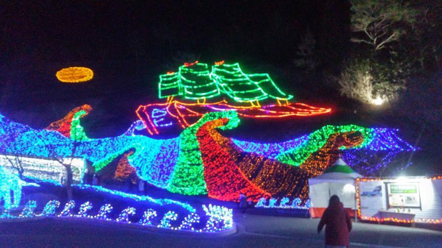 보성 빛 축제