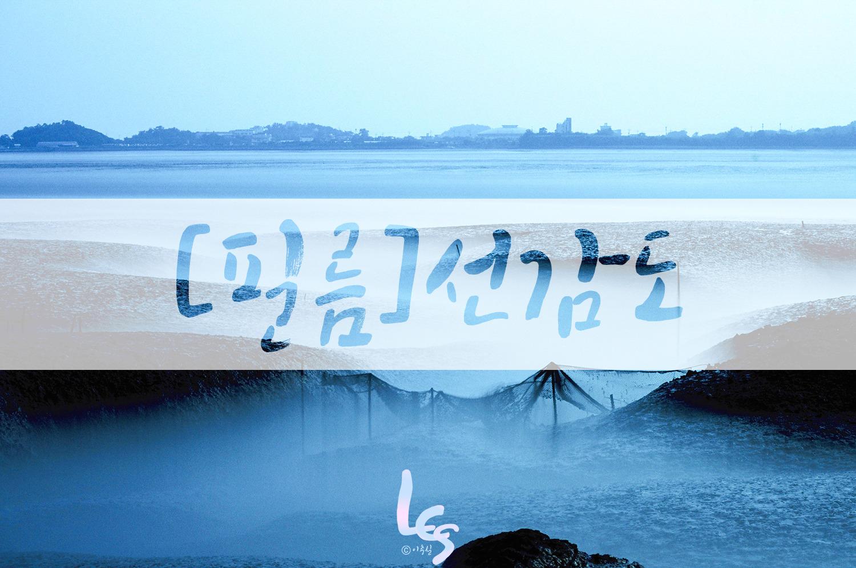 [필름]선감도
