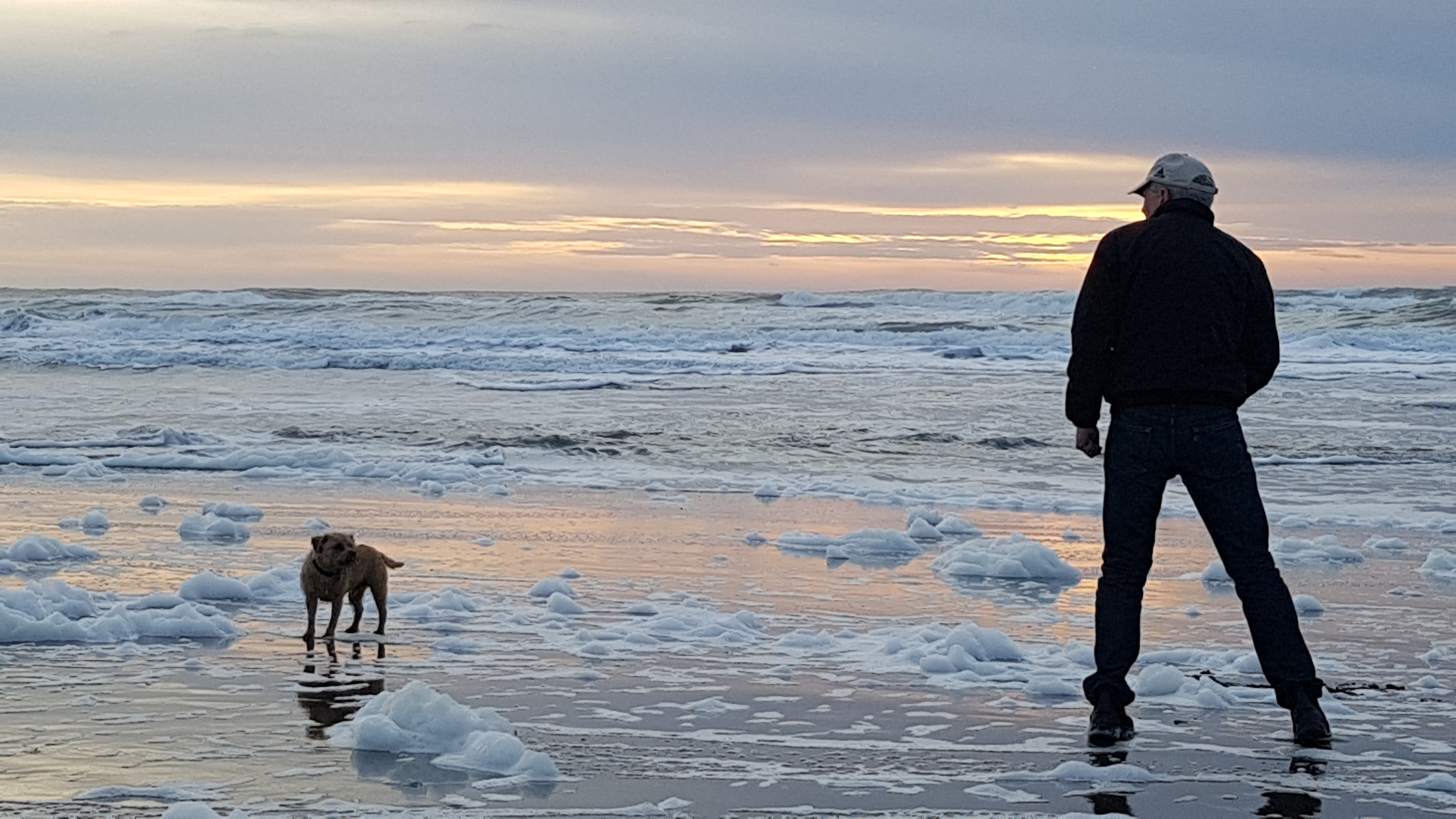 lands end, ocean beach, Unity, [샌프란시스코] 오션비치 (Ocean Beach) #2, 가족단위 산책, 갈매기, 강아지, 강아지 대화 앱, 개, 공, 공 던지기, 과학기술, 귀여운 강아지, 그라데이션, 꽃 모양 그림, 느낌 있는 사진, 똥개 훈련, 랜드 엔즈, 맹순이, 맹순이 생각, 머그잔, 바닷가, 바닷물, 바위언덕, 산책, 산행용 스테인글라스, 샌프란시스코, 오션 비치, 외발서기, 장미 모양, 주인, 채찍, 체스 말, 커피, 통나무 위 연인들, 하늘 그라데이션, 해, 해야 솟아라, 훈련