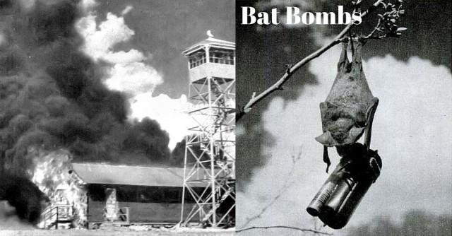박쥐폭탄 Bat Bomb