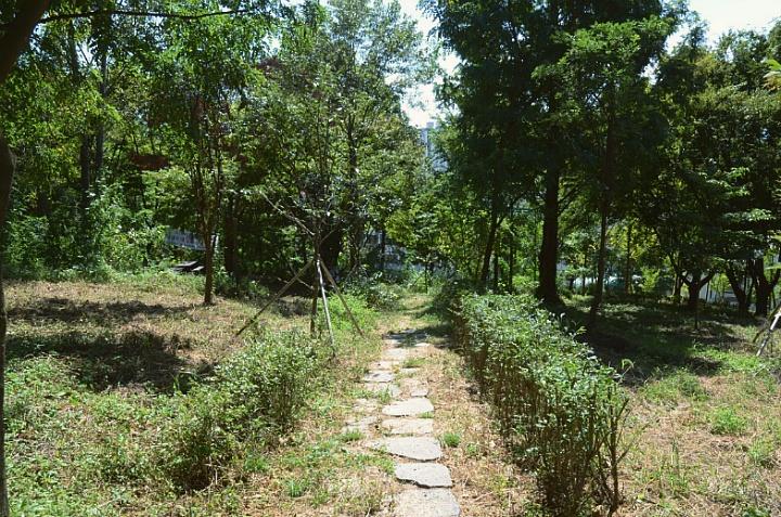 한림디자인고등학교 비탈숲