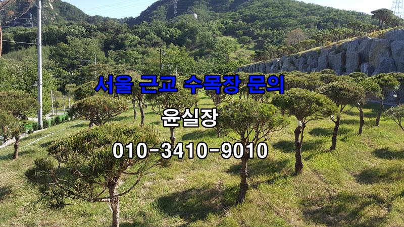 서울근교 가족수목장 추천