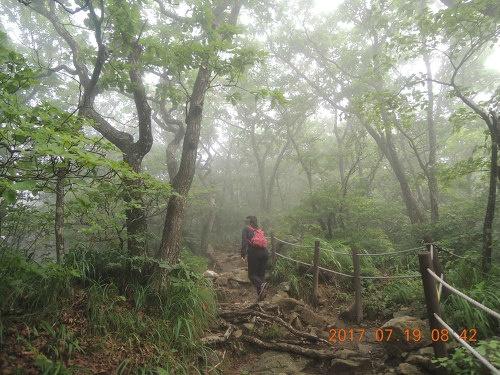 산림청 100대 명산 소백산 등산코스