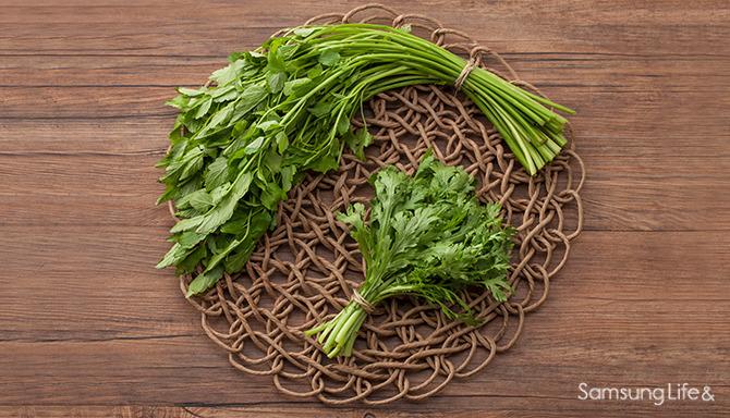 미나리 야채 채소