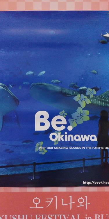 오키나와 여행