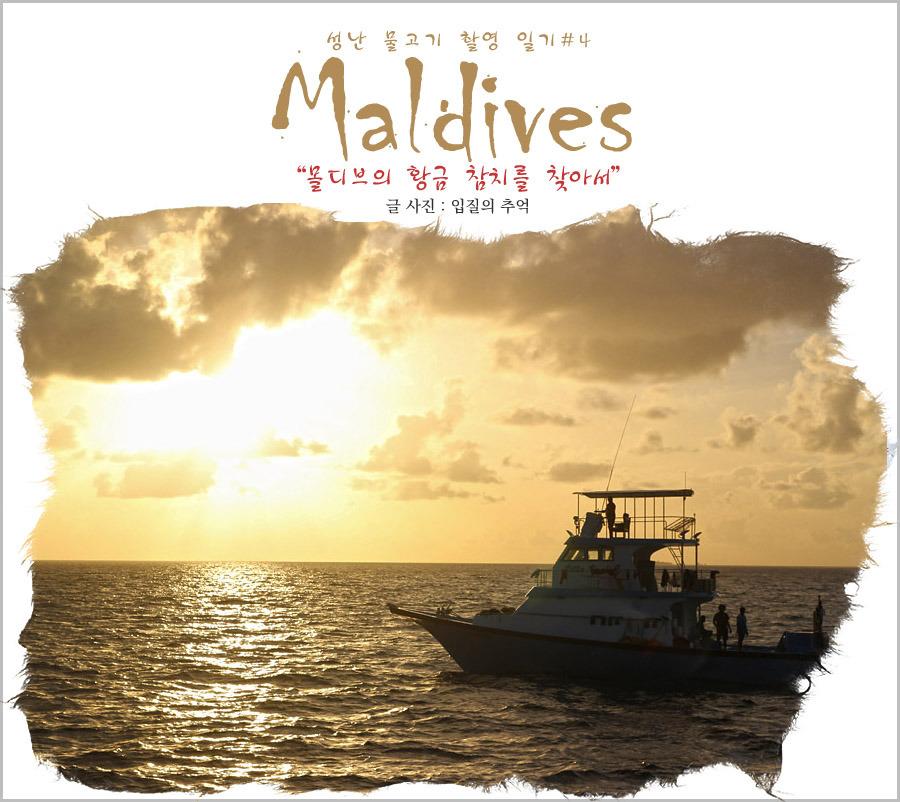 몰디브의 황금 참치를 찾아서, 마미길리 참치잡이 도전