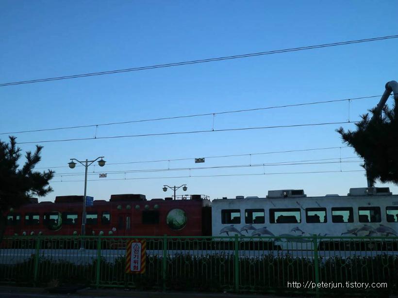 정동진 기차