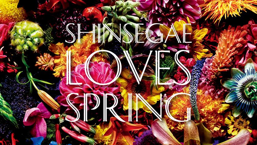 [NEWS] SHINSEGAE LOVES SPRING